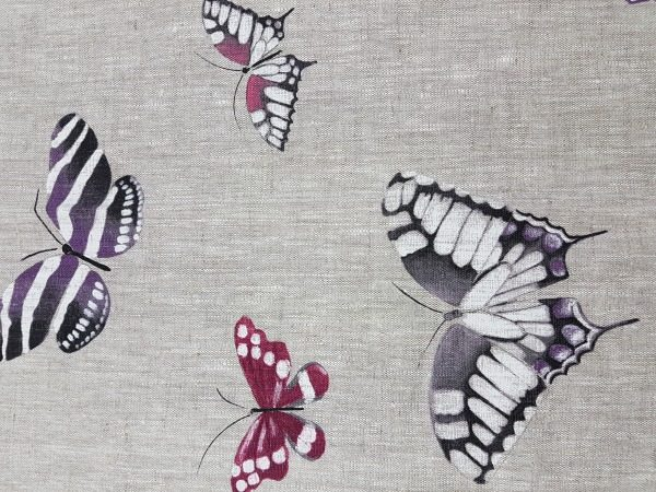 Motýle 1401807