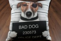 Poťah na vankúš - bad dog